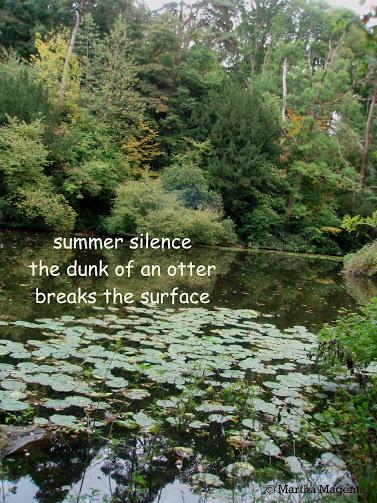 summersilence.jpg